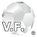 Veil Fullerene ヴェールフラーレン®